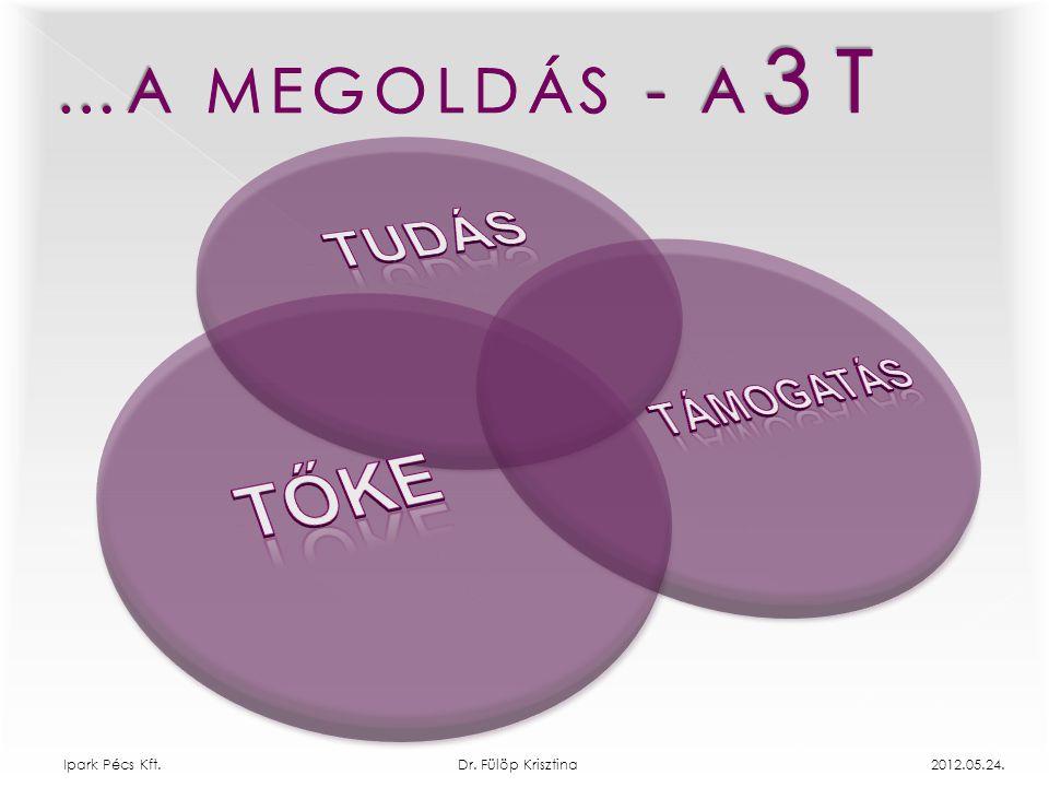 TUDÁS TŐKE …A MEGOLDÁS - A 3 T TÁMOGATÁS