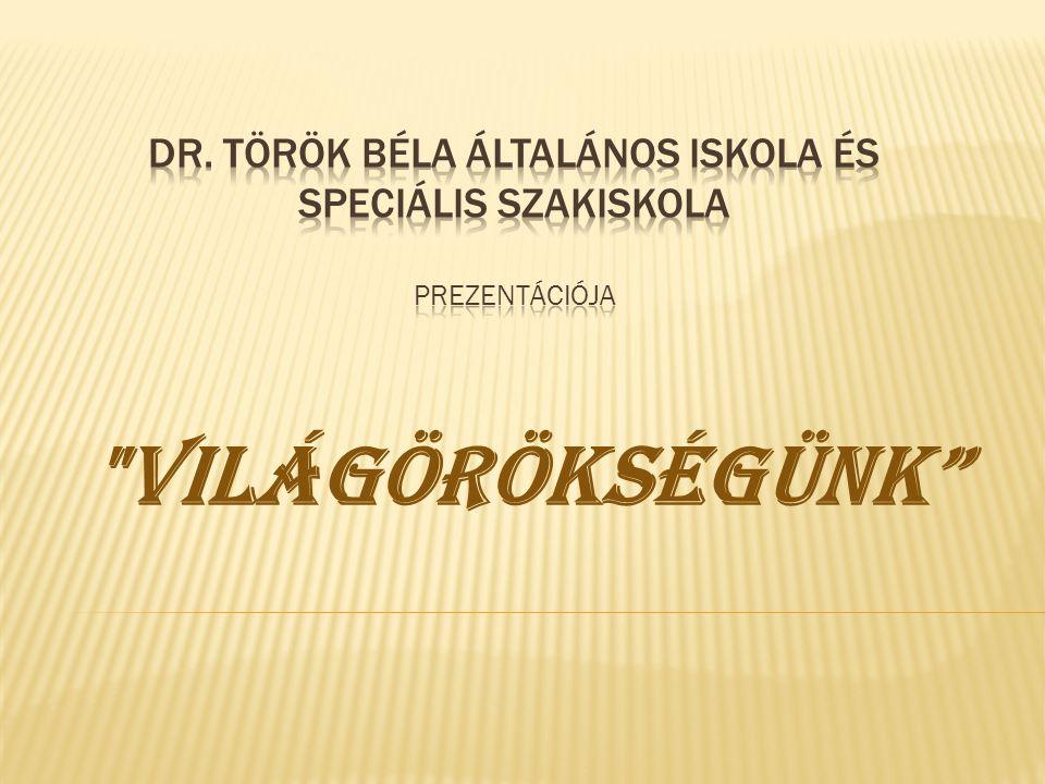 Dr. Török Béla Általános Iskola és Speciális Szakiskola prezentációja