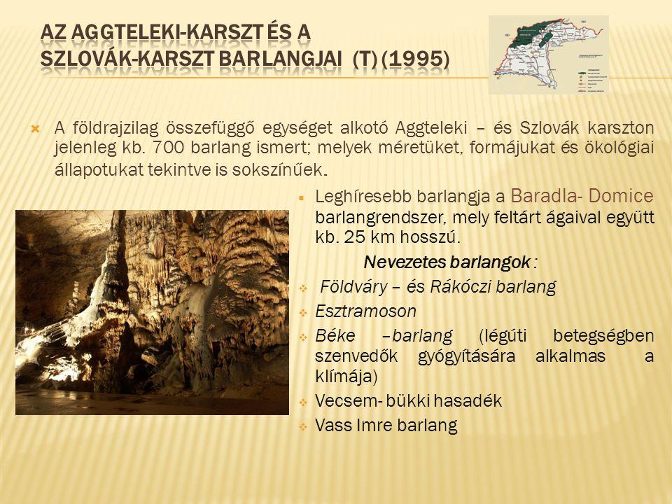 Az Aggteleki-karszt és a Szlovák-karszt barlangjai (T) (1995)