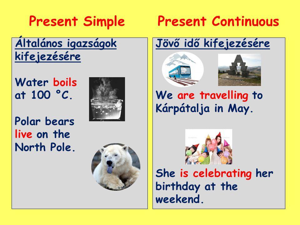 Present Simple Present Continuous