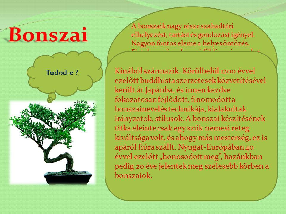 A bonszaik nagy része szabadtéri elhelyezést, tartást és gondozást igényel. Nagyon fontos eleme a helyes öntözés. Fiatal vagy öreg bonsai földje a viszonylag kis edényben sohasem száradhat ki teljesen hosszabb időre, mert ebben az esetben a gyökérvégek elpusztulnak.