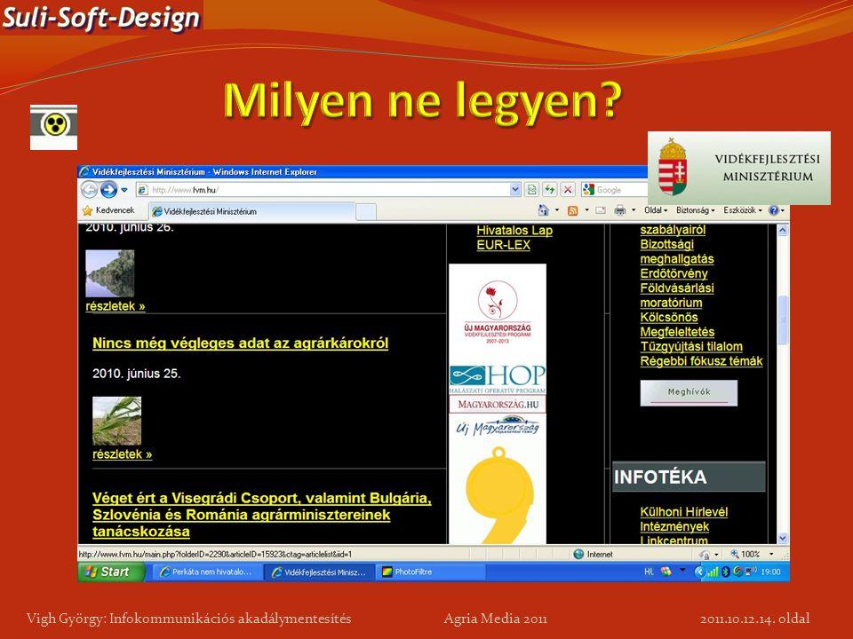 Milyen ne legyen Vigh György: Infokommunikációs akadálymentesítés Agria Media 2011.