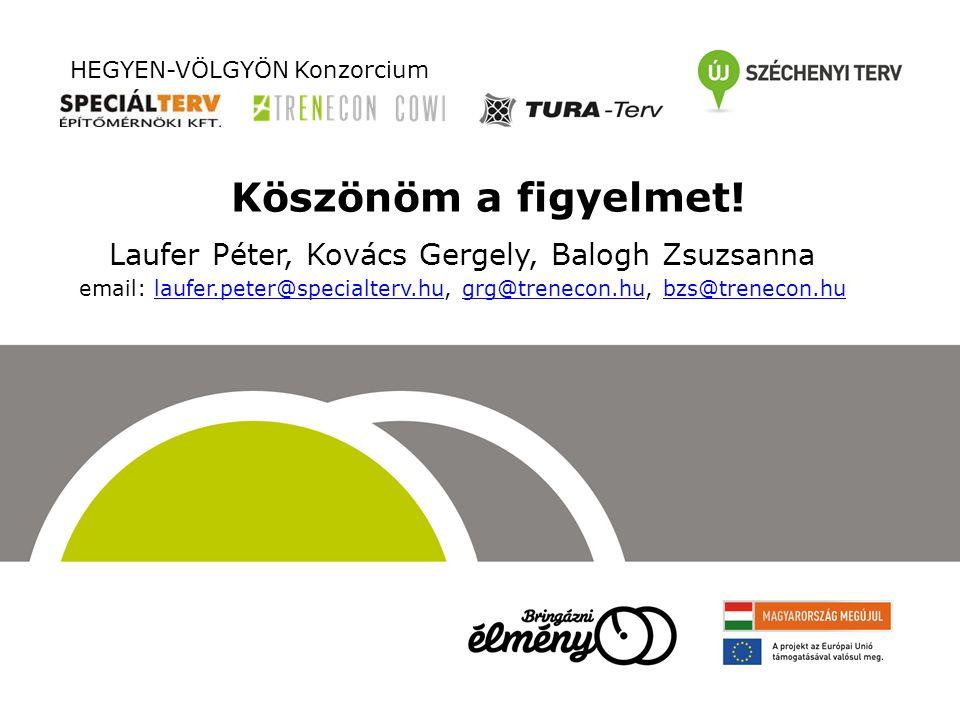 Köszönöm a figyelmet! Laufer Péter, Kovács Gergely, Balogh Zsuzsanna