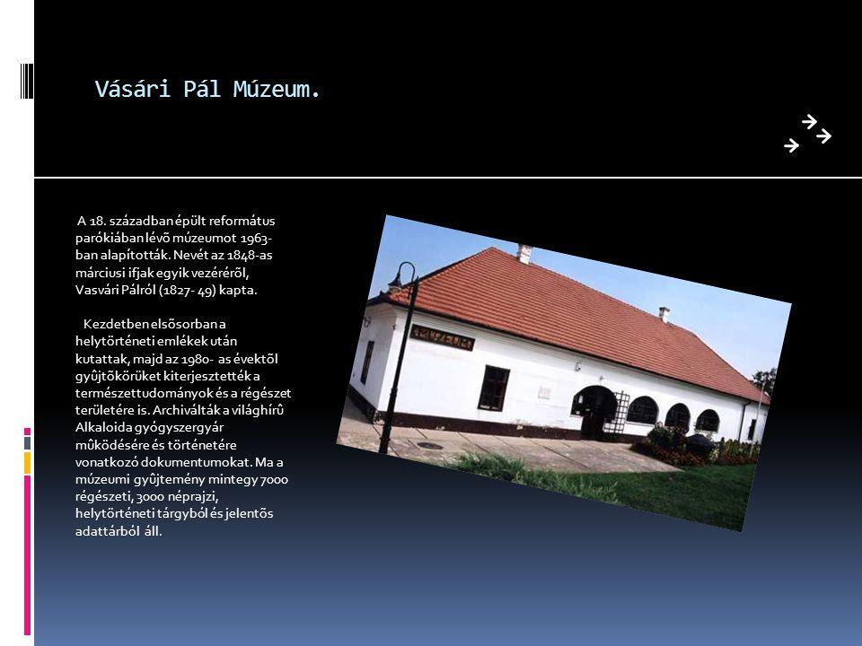 Vásári Pál Múzeum.