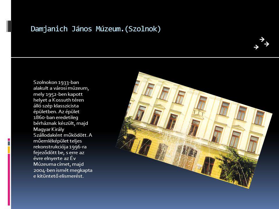 Damjanich János Múzeum.(Szolnok)