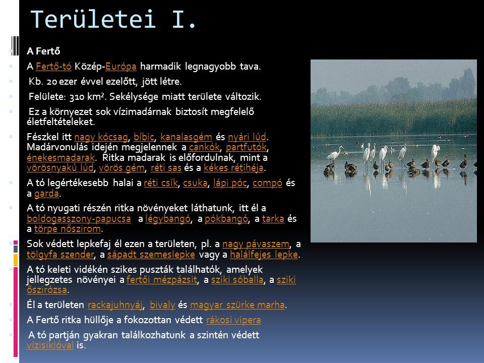 Területei I. A Fertő A Fertő-tó Közép-Európa harmadik legnagyobb tava.