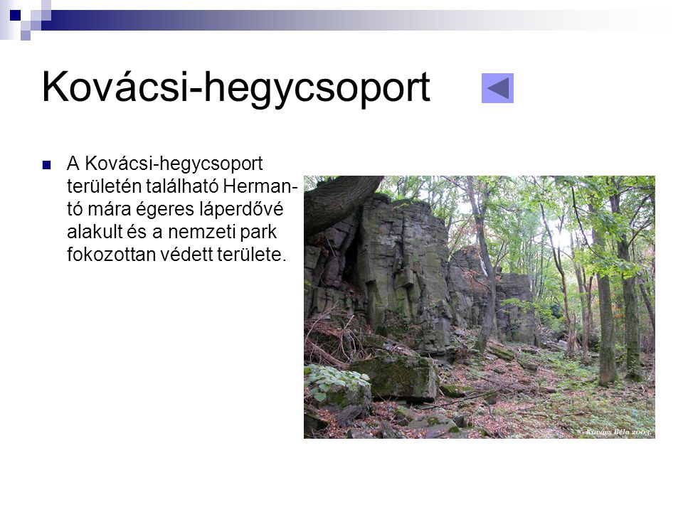 Kovácsi-hegycsoport A Kovácsi-hegycsoport területén található Herman-tó mára égeres láperdővé alakult és a nemzeti park fokozottan védett területe.