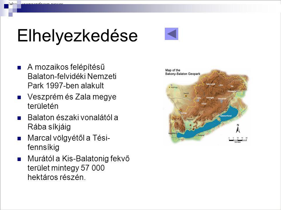 Elhelyezkedése A mozaikos felépítésű Balaton-felvidéki Nemzeti Park 1997-ben alakult. Veszprém és Zala megye területén.