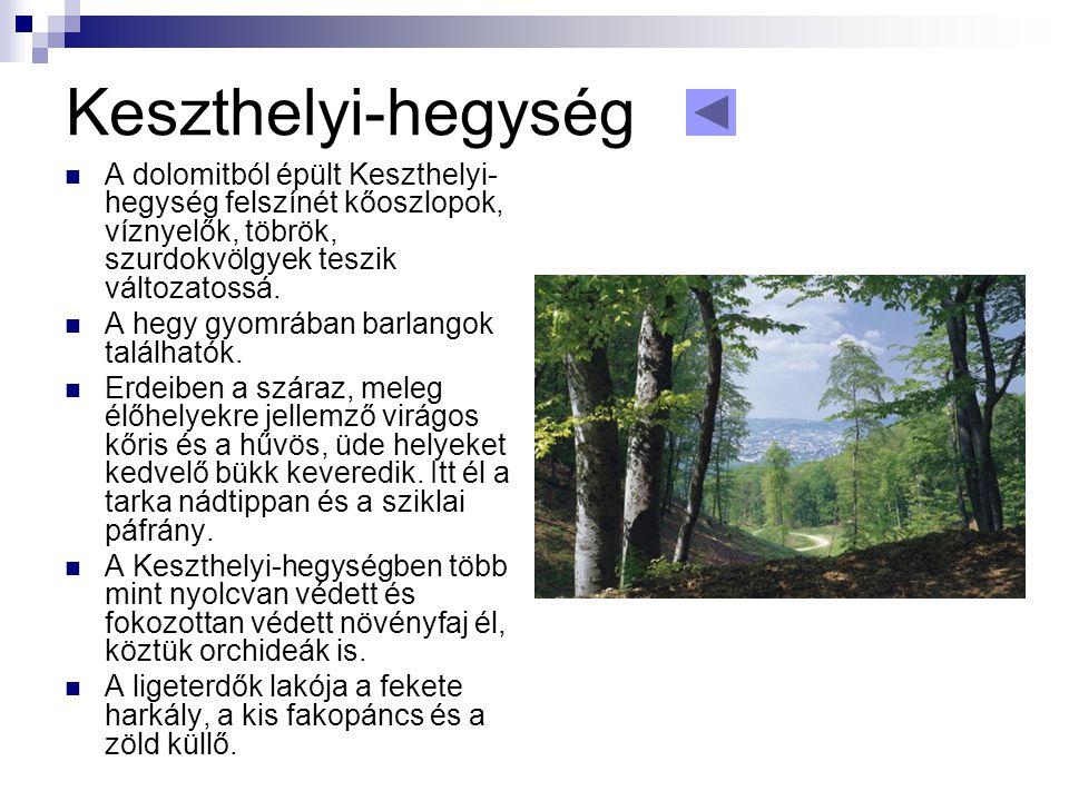 Keszthelyi-hegység A dolomitból épült Keszthelyi-hegység felszínét kőoszlopok, víznyelők, töbrök, szurdokvölgyek teszik változatossá.