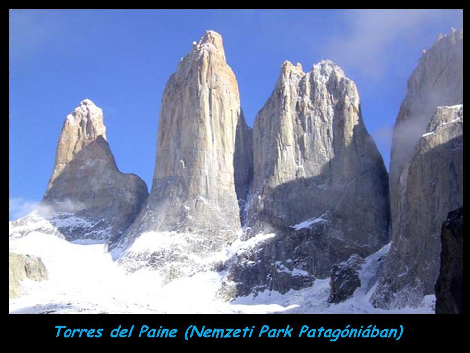 Torres del Paine (Nemzeti Park Patagóniában)