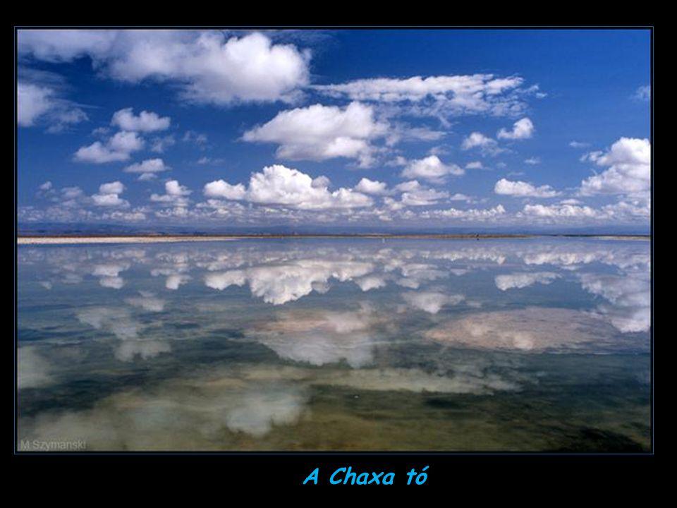 A Chaxa tó