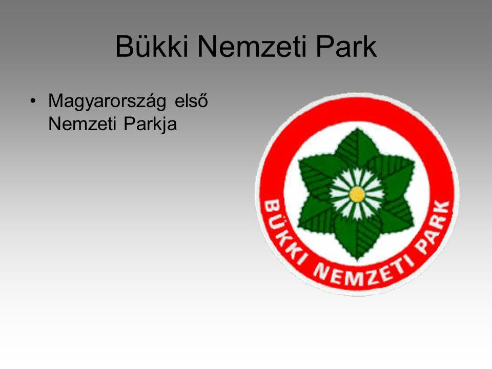 Bükki Nemzeti Park Magyarország első Nemzeti Parkja