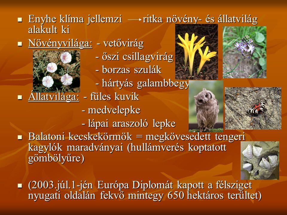 Enyhe klíma jellemzi ritka növény- és állatvilág alakult ki