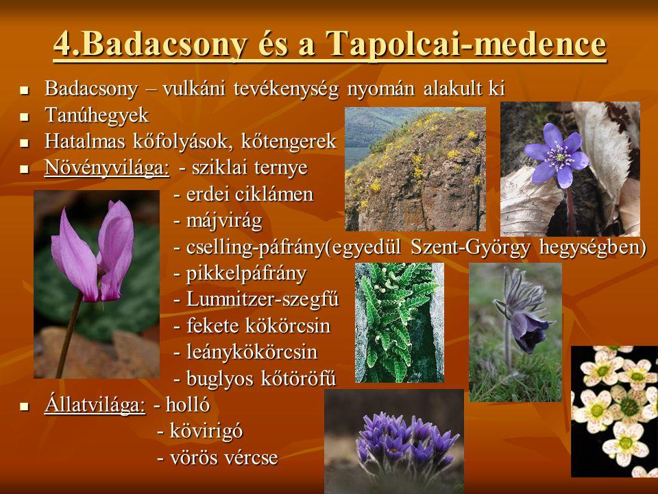 4.Badacsony és a Tapolcai-medence