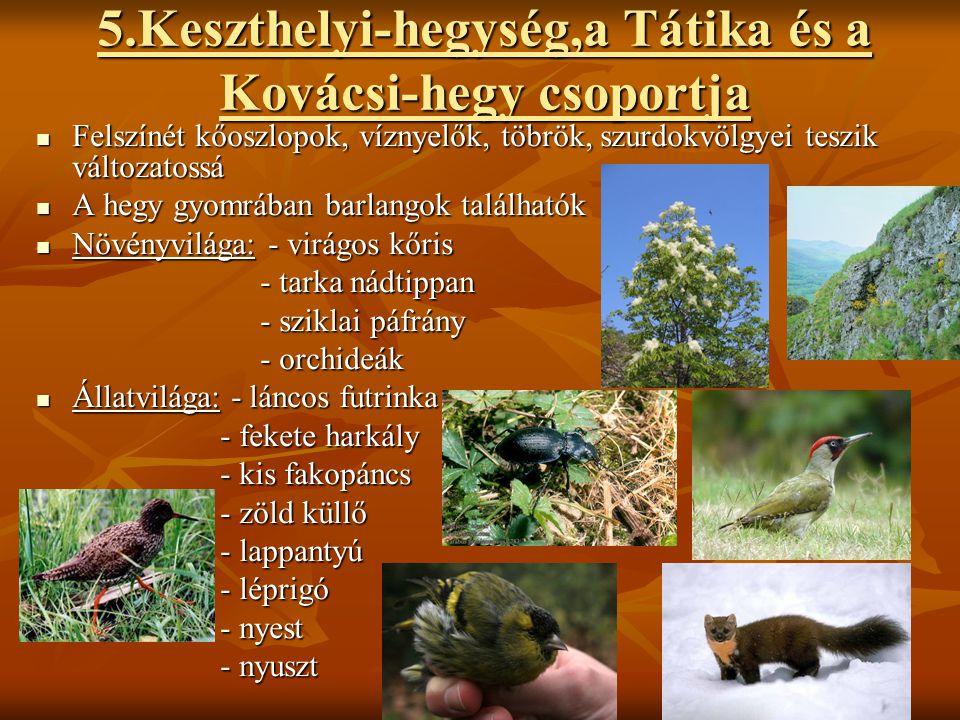 5.Keszthelyi-hegység,a Tátika és a Kovácsi-hegy csoportja
