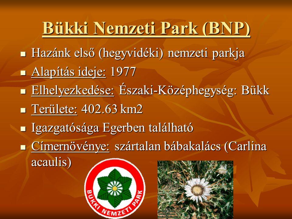 Bükki Nemzeti Park (BNP)
