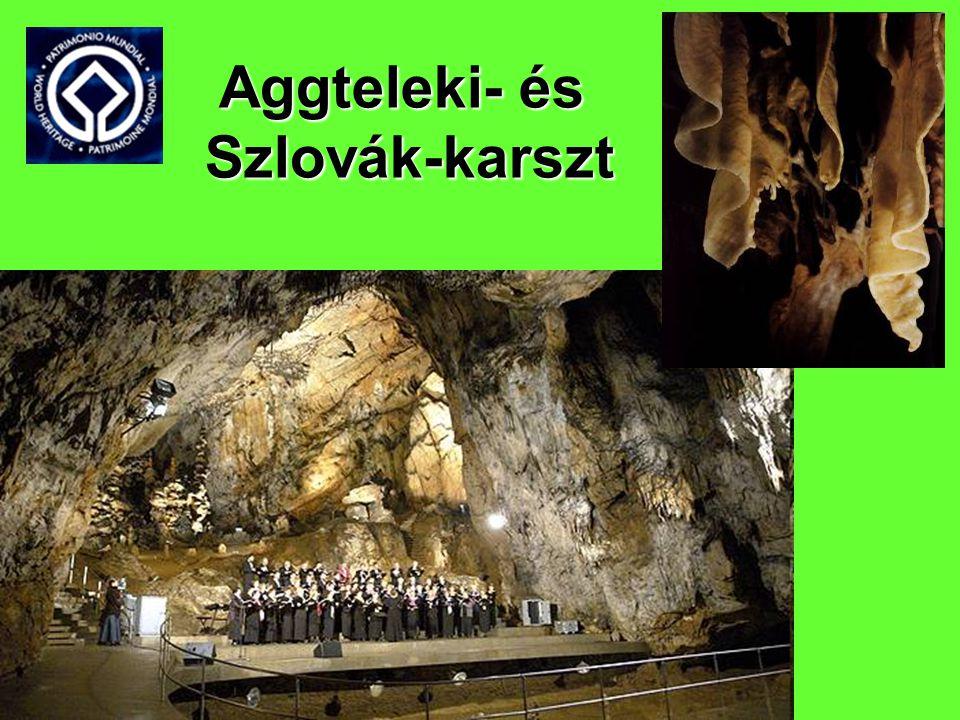 Aggteleki- és Szlovák-karszt