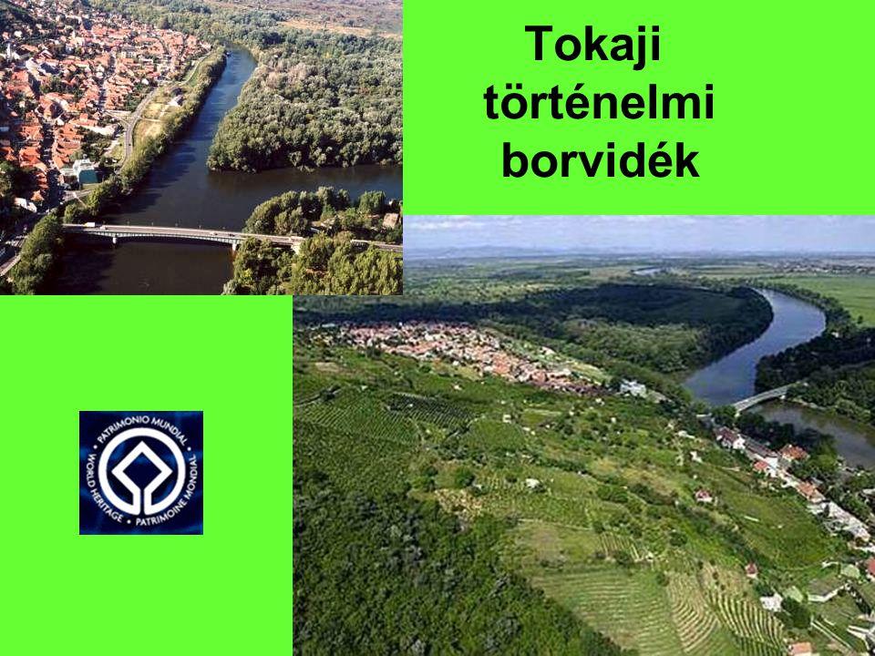 Tokaji történelmi borvidék