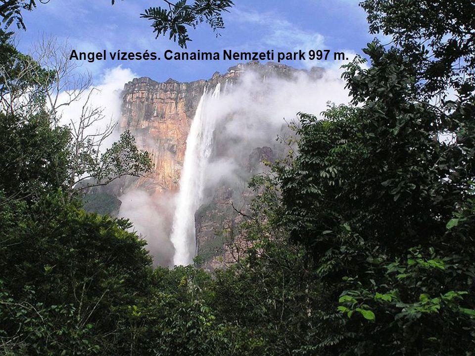 Angel vízesés. Canaima Nemzeti park 997 m.