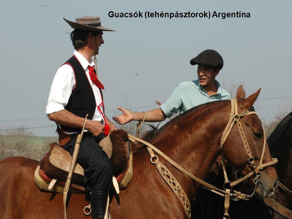 Guacsók (tehénpásztorok) Argentína