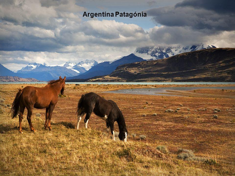 Argentína Patagónia