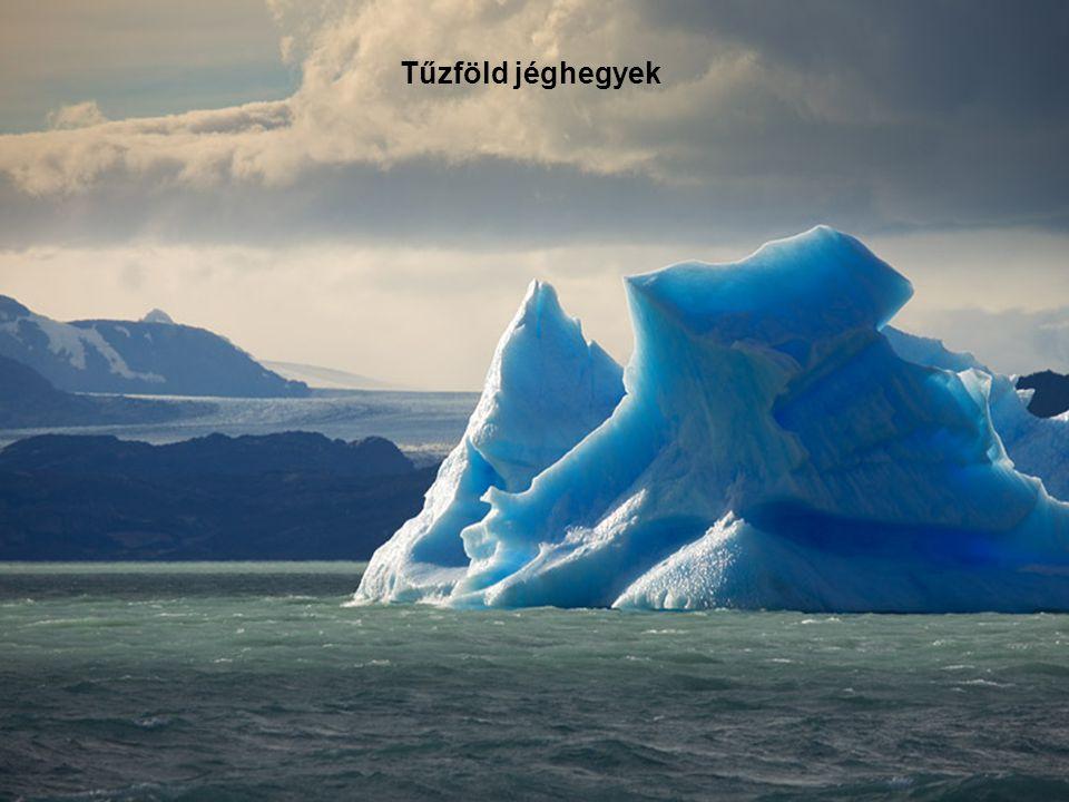 Tűzföld jéghegyek