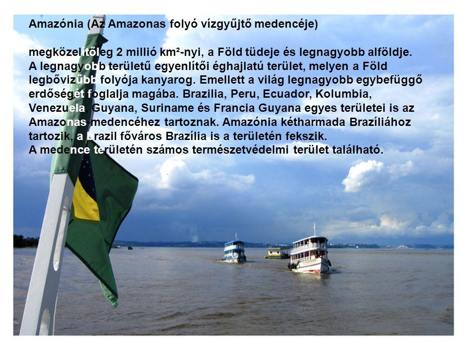 Amazónia (Az Amazonas folyó vízgyűjtő medencéje)