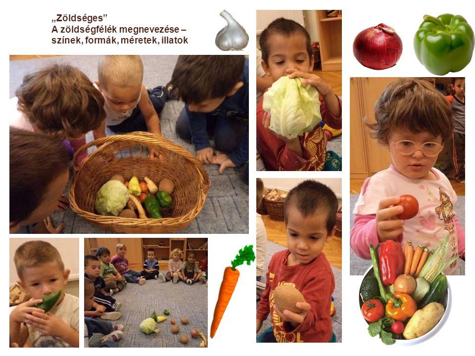"""""""Zöldséges A zöldségfélék megnevezése – színek, formák, méretek, illatok"""