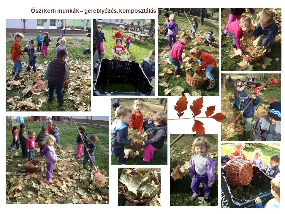 Őszi kerti munkák – gereblyézés, komposztálás