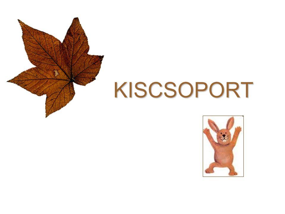 KISCSOPORT