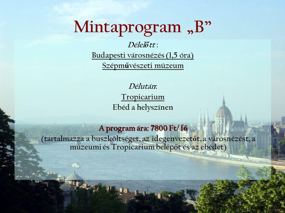 Budapesti városnézés (1,5 óra)