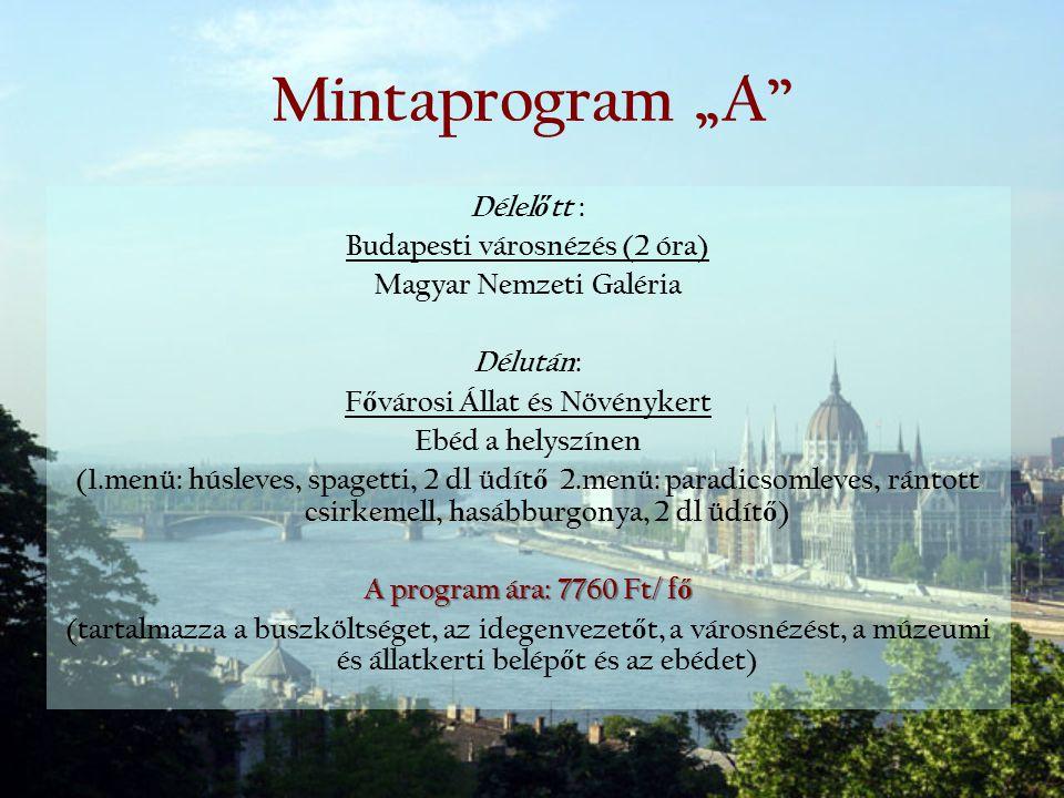 """Mintaprogram """"A Délelőtt : Budapesti városnézés (2 óra)"""