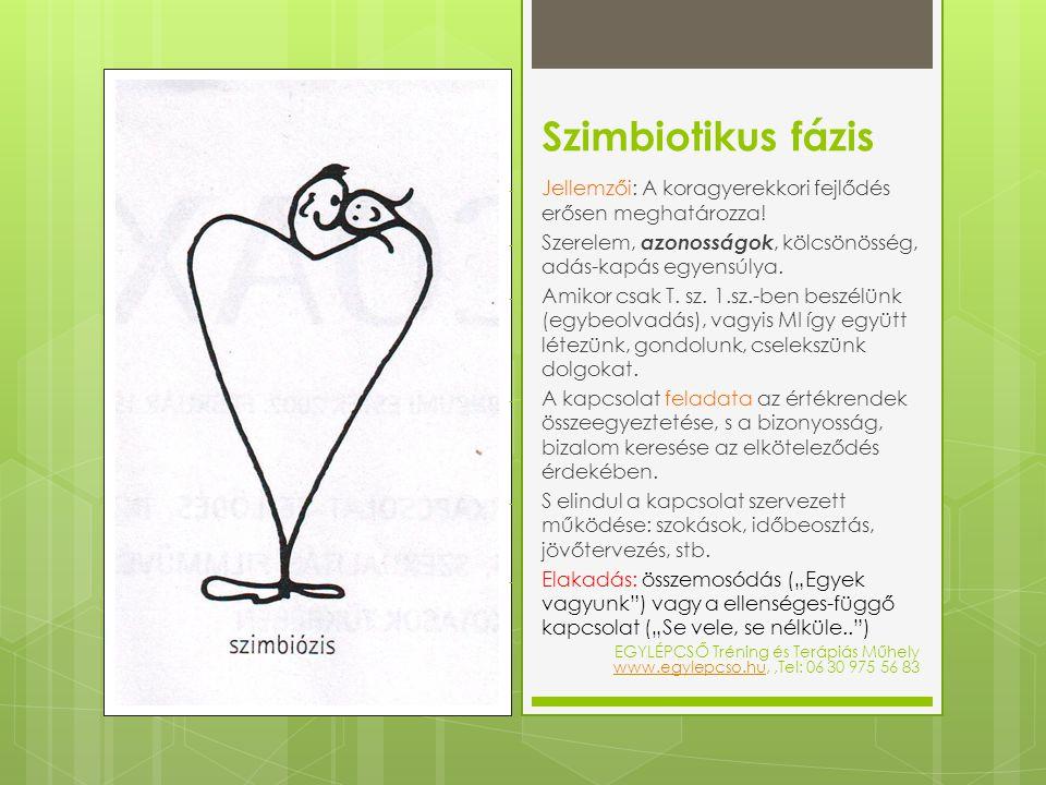 Szimbiotikus fázis Jellemzői: A koragyerekkori fejlődés erősen meghatározza! Szerelem, azonosságok, kölcsönösség, adás-kapás egyensúlya.