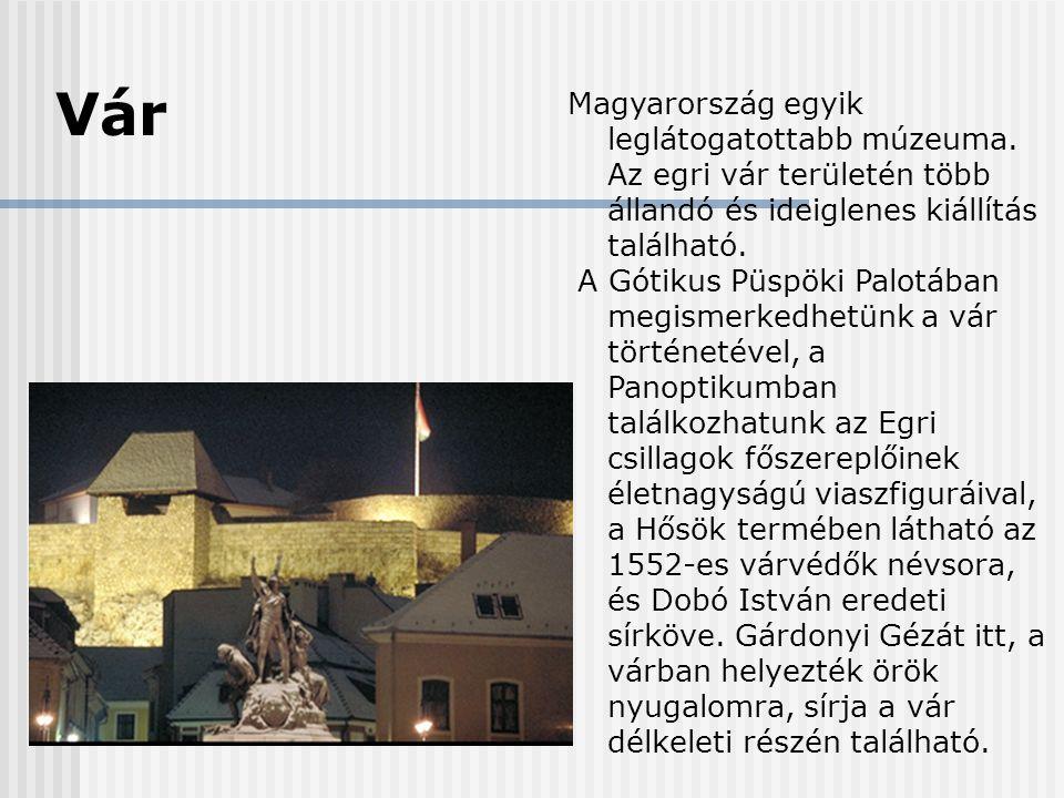 Vár Magyarország egyik leglátogatottabb múzeuma. Az egri vár területén több állandó és ideiglenes kiállítás található.