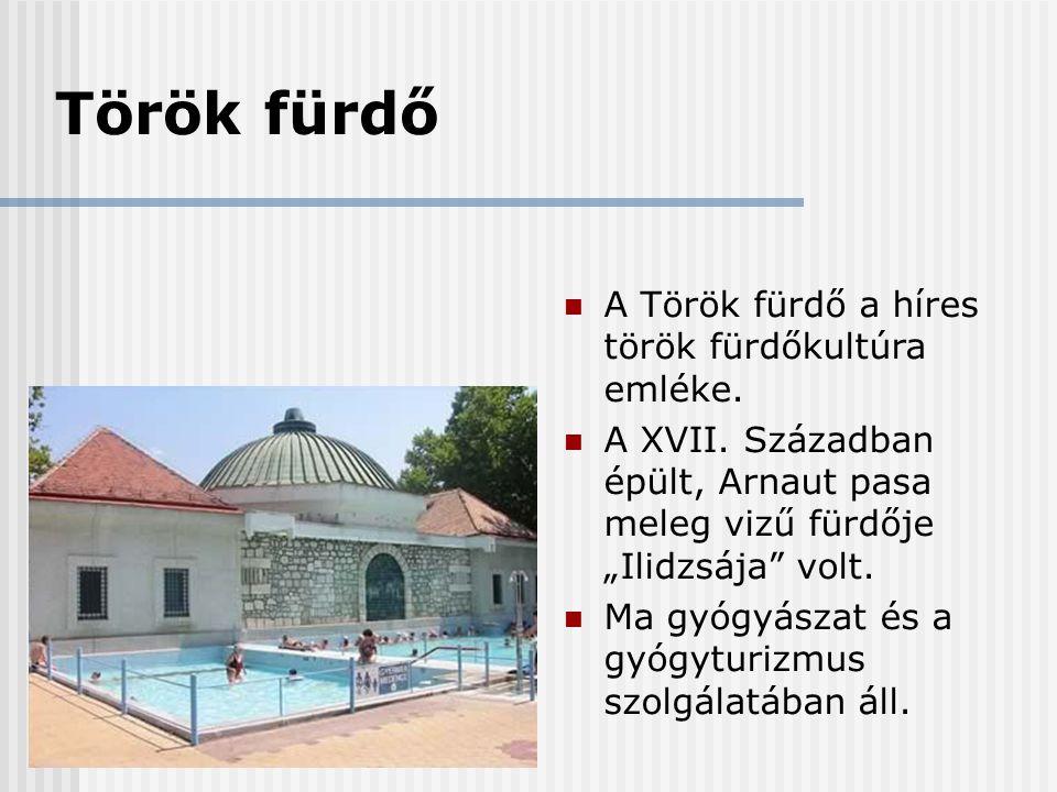 Török fürdő A Török fürdő a híres török fürdőkultúra emléke.