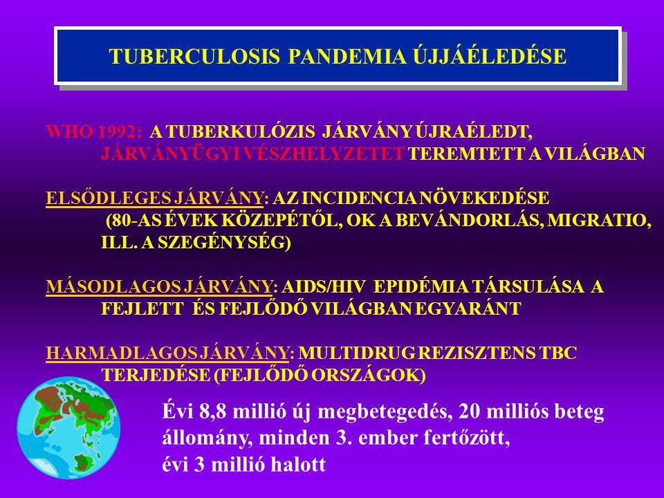 TUBERCULOSIS PANDEMIA ÚJJÁÉLEDÉSE