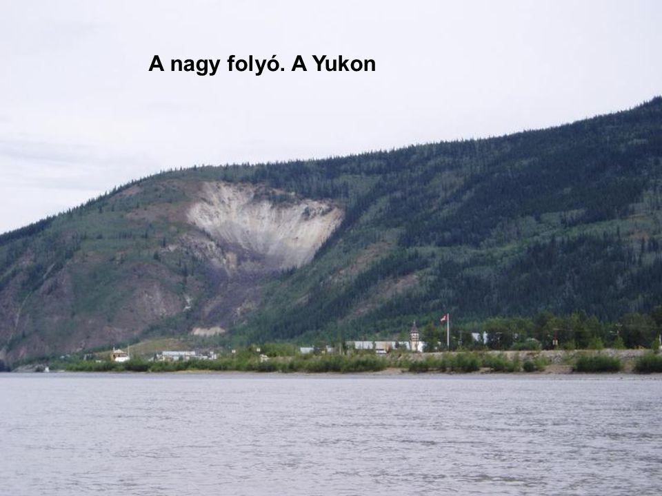 A nagy folyó. A Yukon