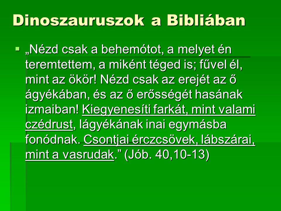 Dinoszauruszok a Bibliában