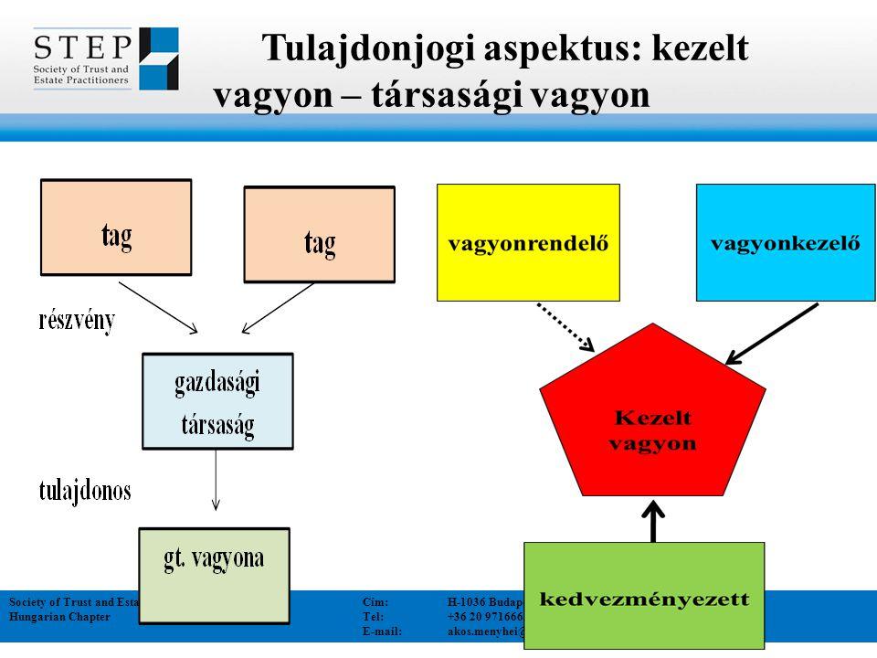 Tulajdonjogi aspektus: kezelt vagyon – társasági vagyon