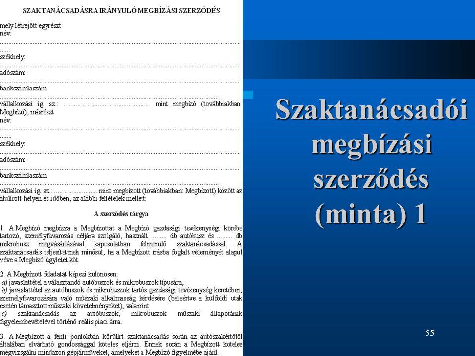 Szaktanácsadói megbízási szerződés (minta) 1