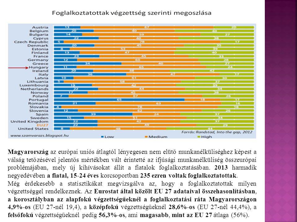 Magyarország az európai uniós átlagtól lényegesen nem elütő munkanélküliséghez képest a válság tetőzésével jelentős mértékben vált érintetté az ifjúsági munkanélküliség összeurópai problémájában, mely új kihívásokat állít a fiatalok foglalkoztatásában. 2013 harmadik negyedévében a fiatal, 15-24 éves korcsoportban 235 ezren voltak foglalkoztatottak.