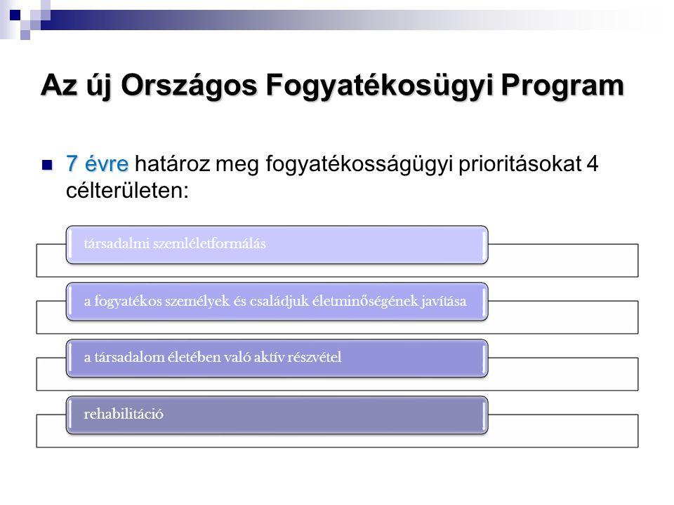 Az új Országos Fogyatékosügyi Program