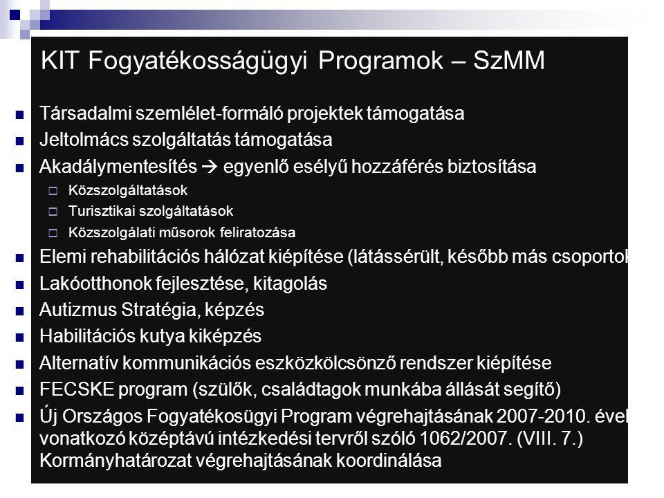 KIT Fogyatékosságügyi Programok – SzMM