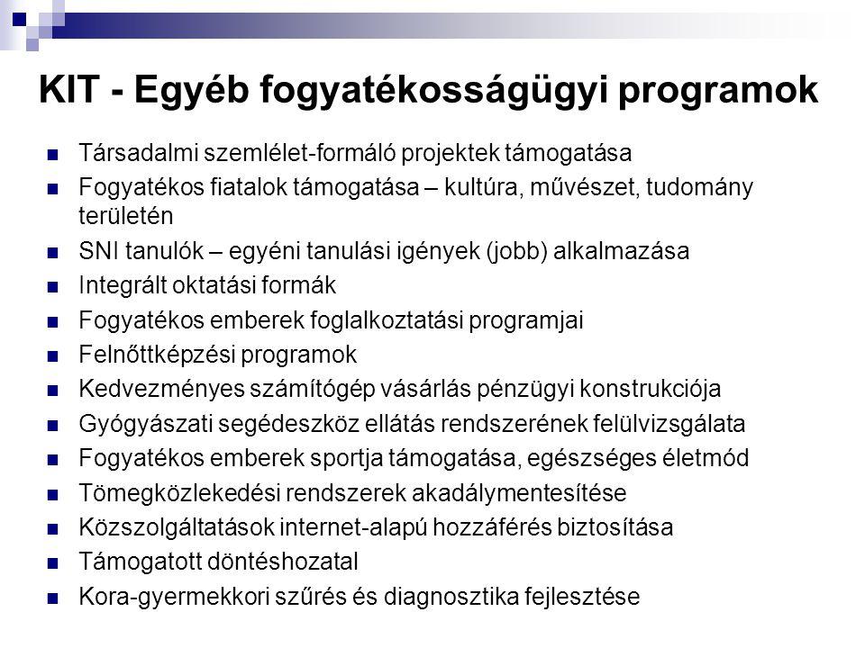 KIT - Egyéb fogyatékosságügyi programok