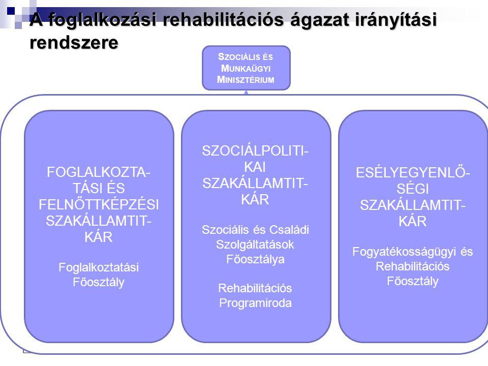 A foglalkozási rehabilitációs ágazat irányítási rendszere