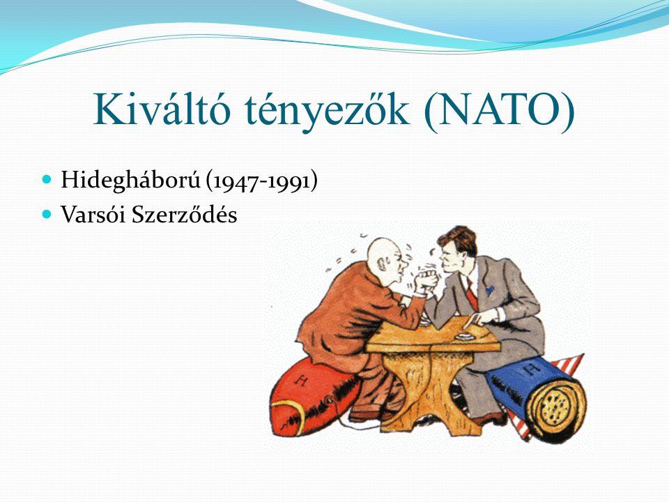 Kiváltó tényezők (NATO)