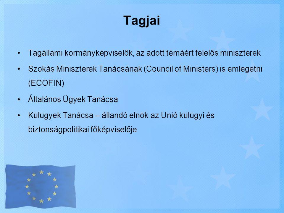 Tagjai Tagállami kormányképviselők, az adott témáért felelős miniszterek. Szokás Miniszterek Tanácsának (Council of Ministers) is emlegetni (ECOFIN)