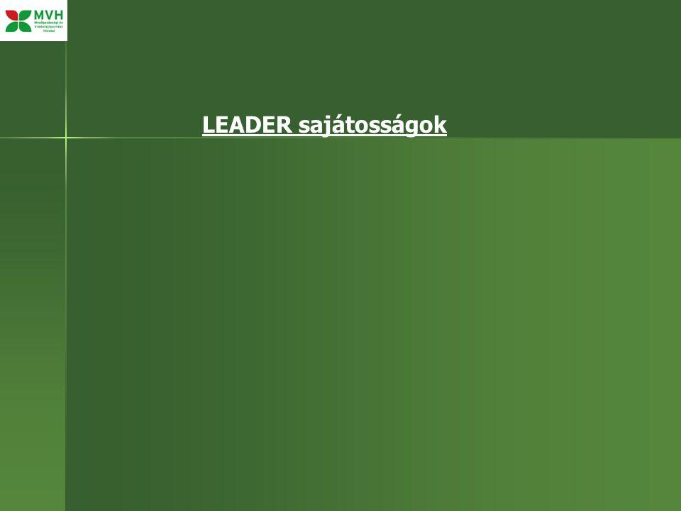 LEADER sajátosságok