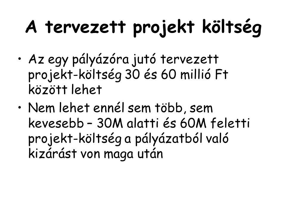 A tervezett projekt költség