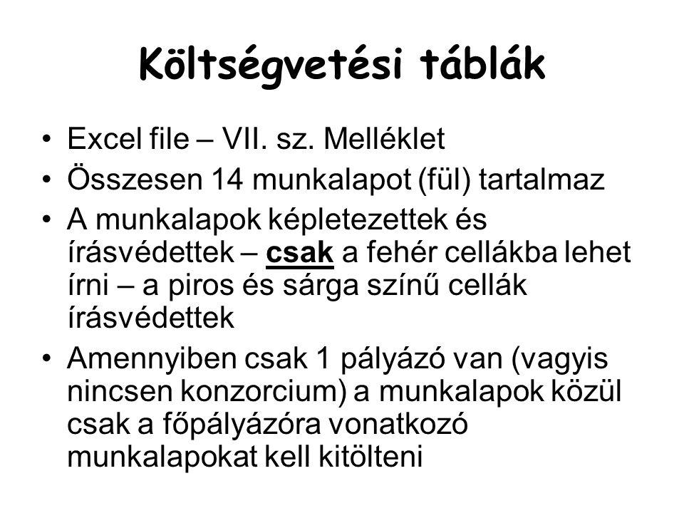 Költségvetési táblák Excel file – VII. sz. Melléklet